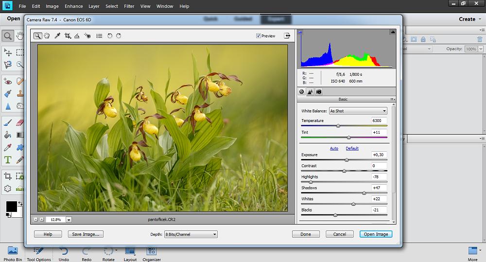 adobe photoshop elements vs pro